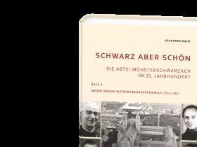 Johannes Mahr – Schwarz aber schön – Band 6